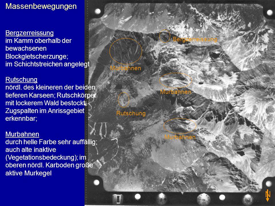 Massenbewegungen Bergzerreissung im Kamm oberhalb der bewachsenen Blockgletscherzunge; im Schichtstreichen angelegt Rutschung nördl.