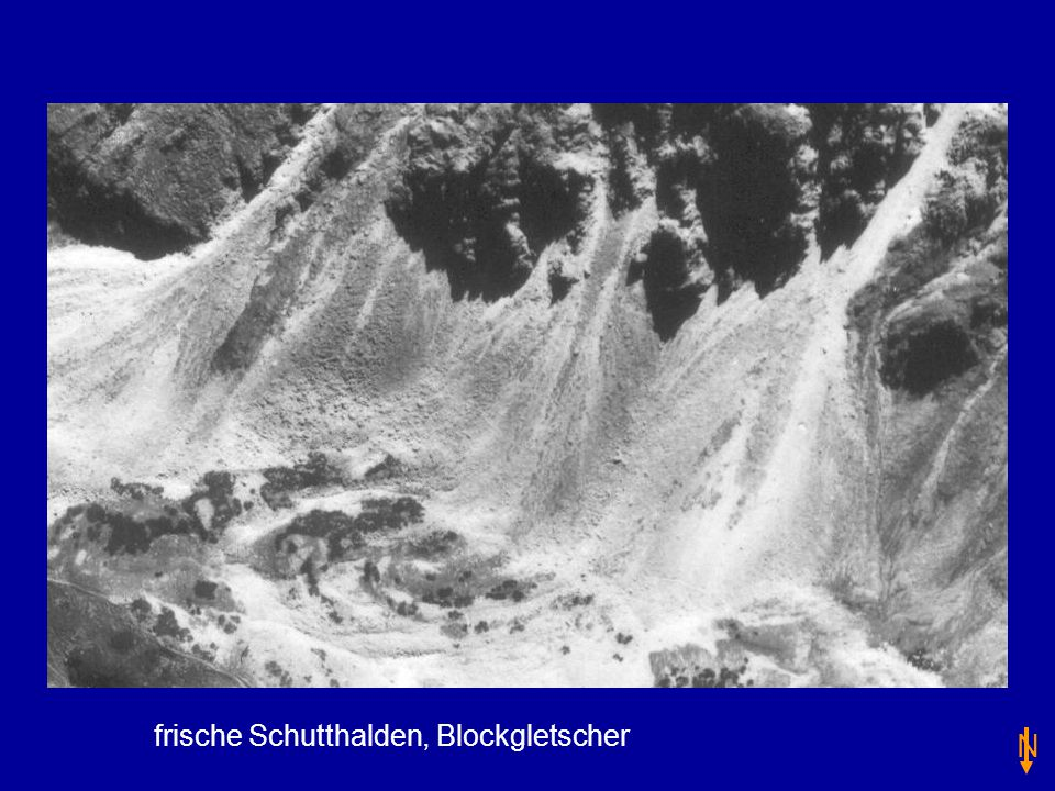 frische Schutthalden, Blockgletscher N