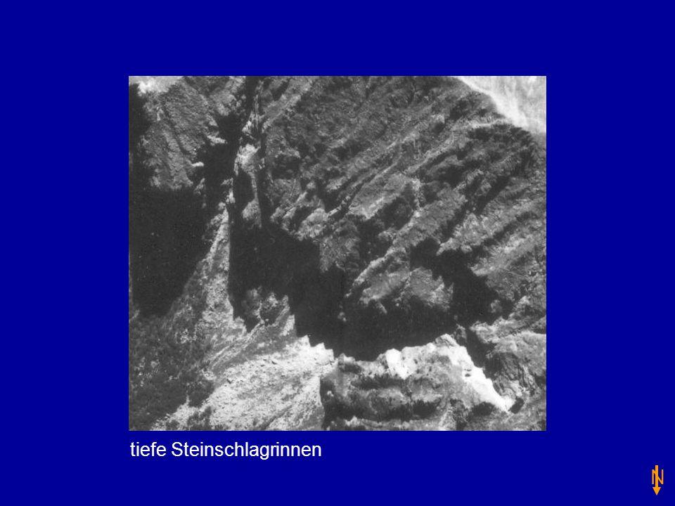 tiefe Steinschlagrinnen N