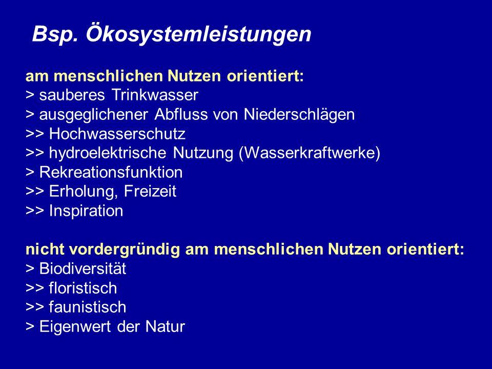 Bsp.Ökosystemleistungen Bsp.