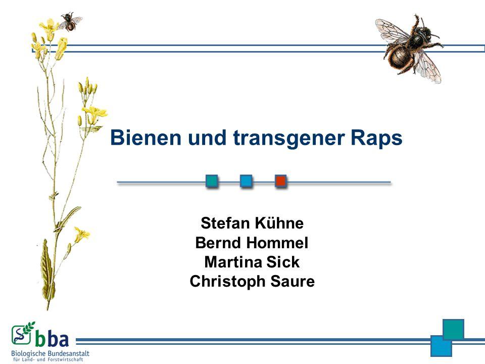 Stefan Kühne Bernd Hommel Martina Sick Christoph Saure Bienen und transgener Raps