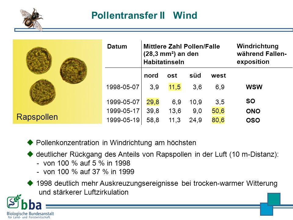 Pollentransfer II Wind  Pollenkonzentration in Windrichtung am höchsten  deutlicher Rückgang des Anteils von Rapspollen in der Luft (10 m-Distanz):