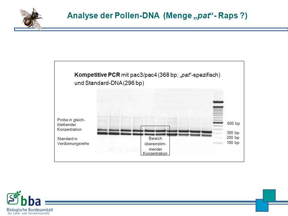 """Kompetitive PCR mit pac3/pac4 (368 bp; """"pat""""-spezifisch) und Standard-DNA (296 bp) 100 bp 200 bp 300 bp 600 bp Bereich übereinstim- mender Konzentrati"""