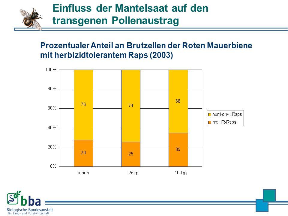 Prozentualer Anteil an Brutzellen der Roten Mauerbiene mit herbizidtolerantem Raps (2003) Einfluss der Mantelsaat auf den transgenen Pollenaustrag m m