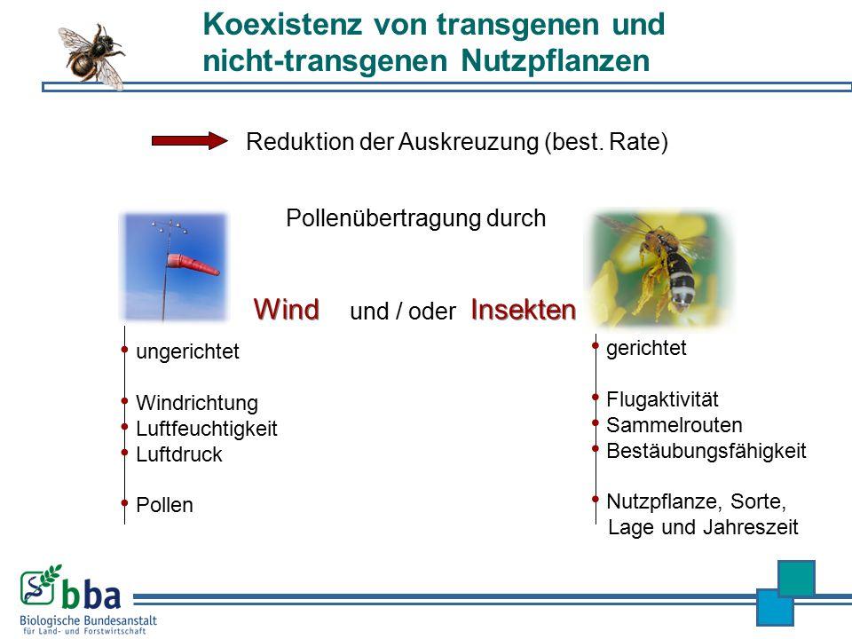 Koexistenz von transgenen und nicht-transgenen Nutzpflanzen Reduktion der Auskreuzung (best. Rate) und / oder gerichtet Flugaktivität Sammelrouten Bes