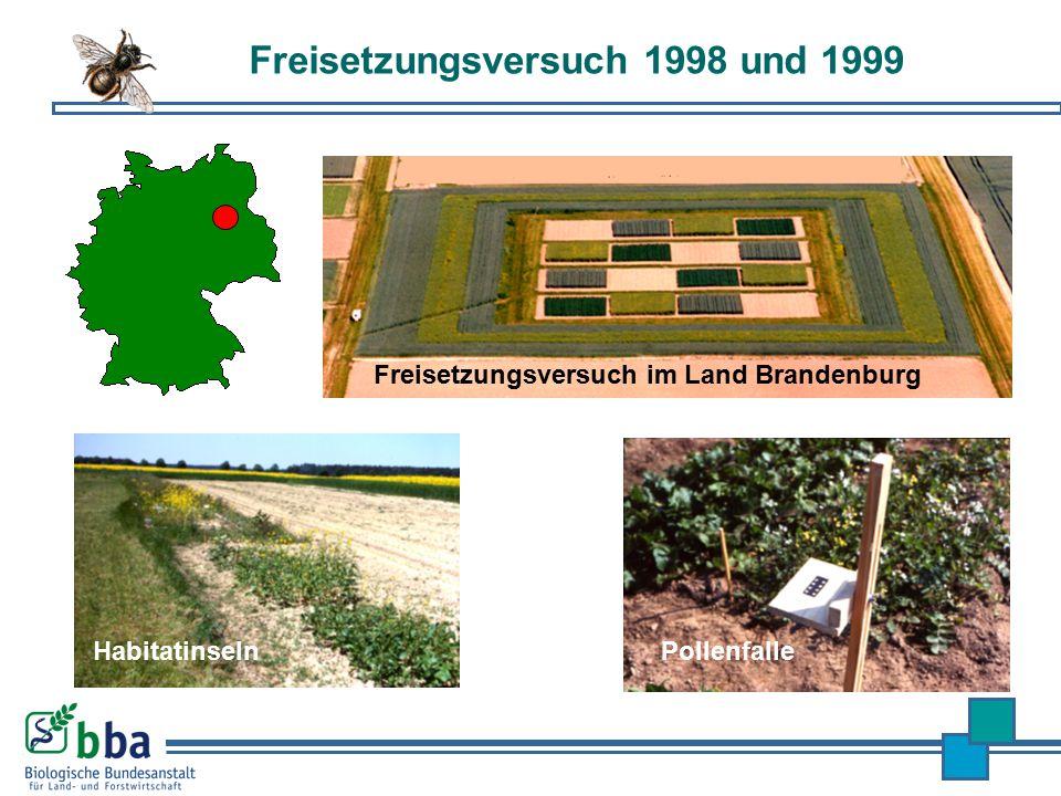 Freisetzungsversuch 1998 und 1999 Habitatinseln Pollenfalle Freisetzungsversuch im Land Brandenburg
