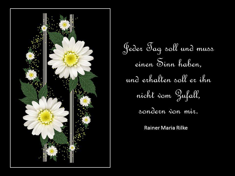 Die schönsten Erinnerungen sammelt man immer zu zweit. Luise Rinser