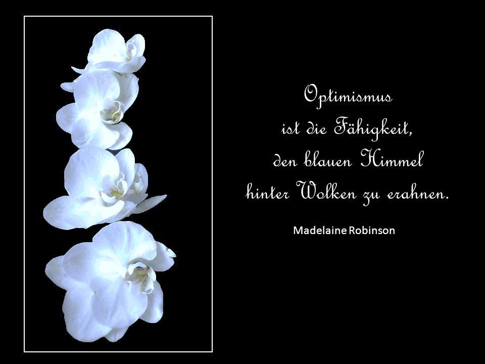 Rainer Maria Rilke Jeder Tag soll und muss einen Sinn haben, und erhalten soll er ihn nicht vom Zufall, sondern von mir.