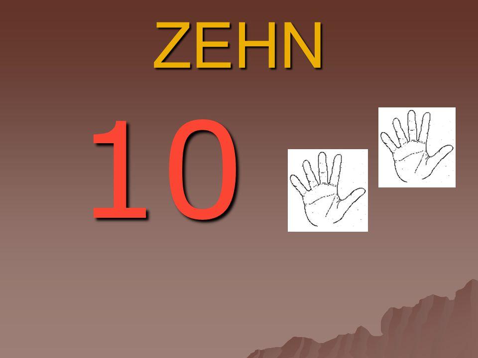 ZEHN 10 10