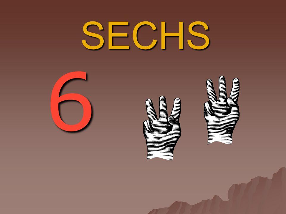 SECHS 6