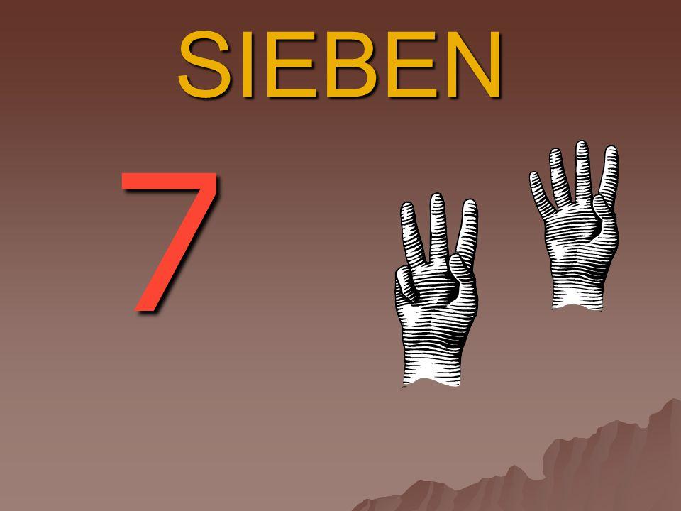 SIEBEN 7