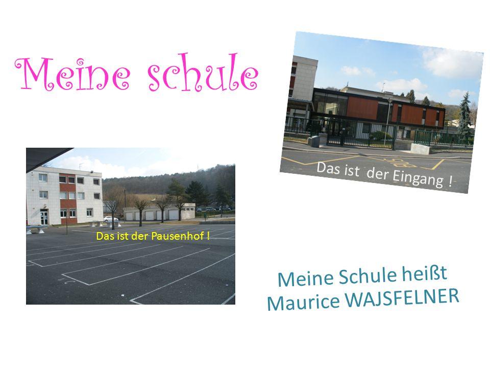 Meine schule Meine Schule heißt Maurice WAJSFELNER Das ist der Pausenhof ! Das ist der Eingang !