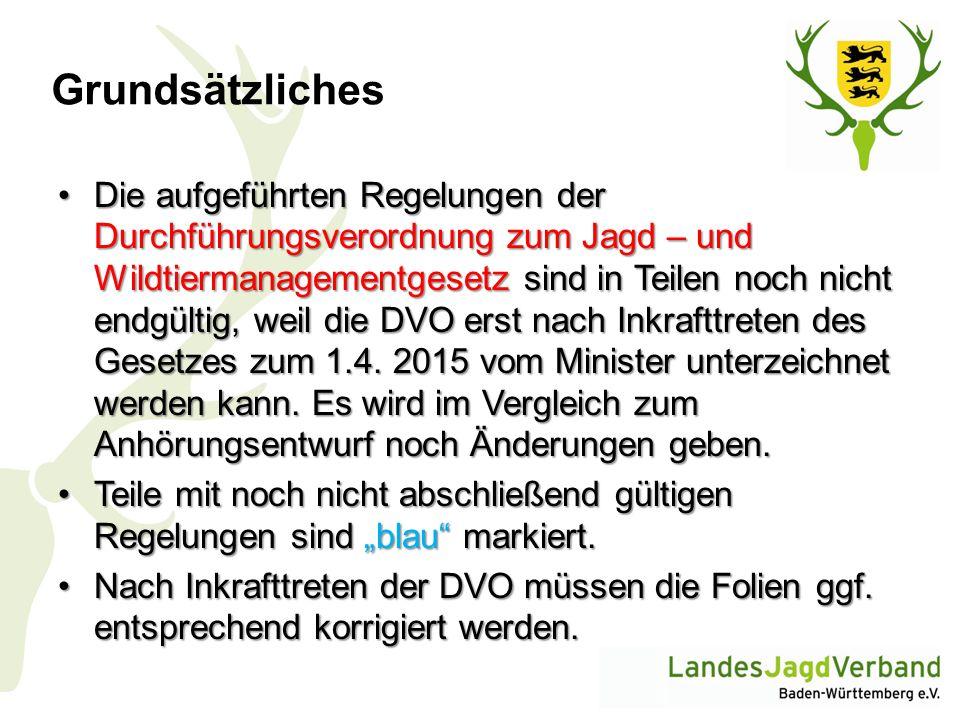 Jagdzeiten – Schalenwild II Rehwild Kitze vom 1.September bis 31.