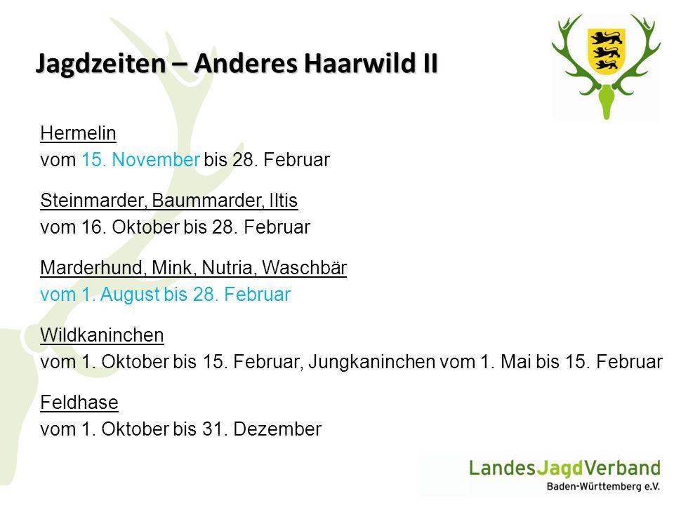 Jagdzeiten – Anderes Haarwild II Hermelin vom 15. November bis 28. Februar Steinmarder, Baummarder, Iltis vom 16. Oktober bis 28. Februar Marderhund,