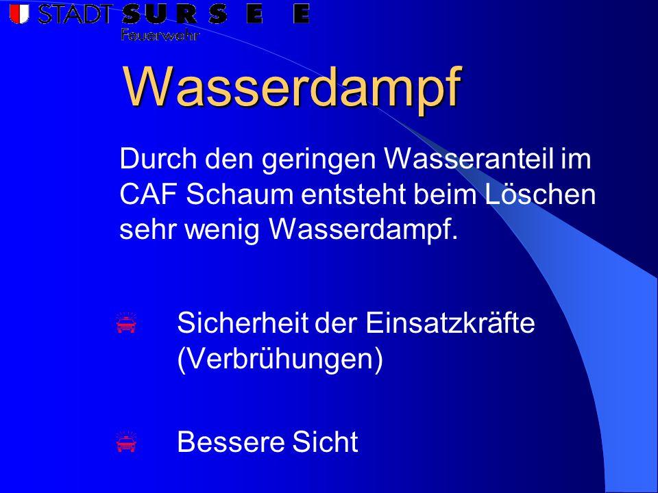 Wasserdampf  Sicherheit der Einsatzkräfte (Verbrühungen)  Bessere Sicht Durch den geringen Wasseranteil im CAF Schaum entsteht beim Löschen sehr wenig Wasserdampf.