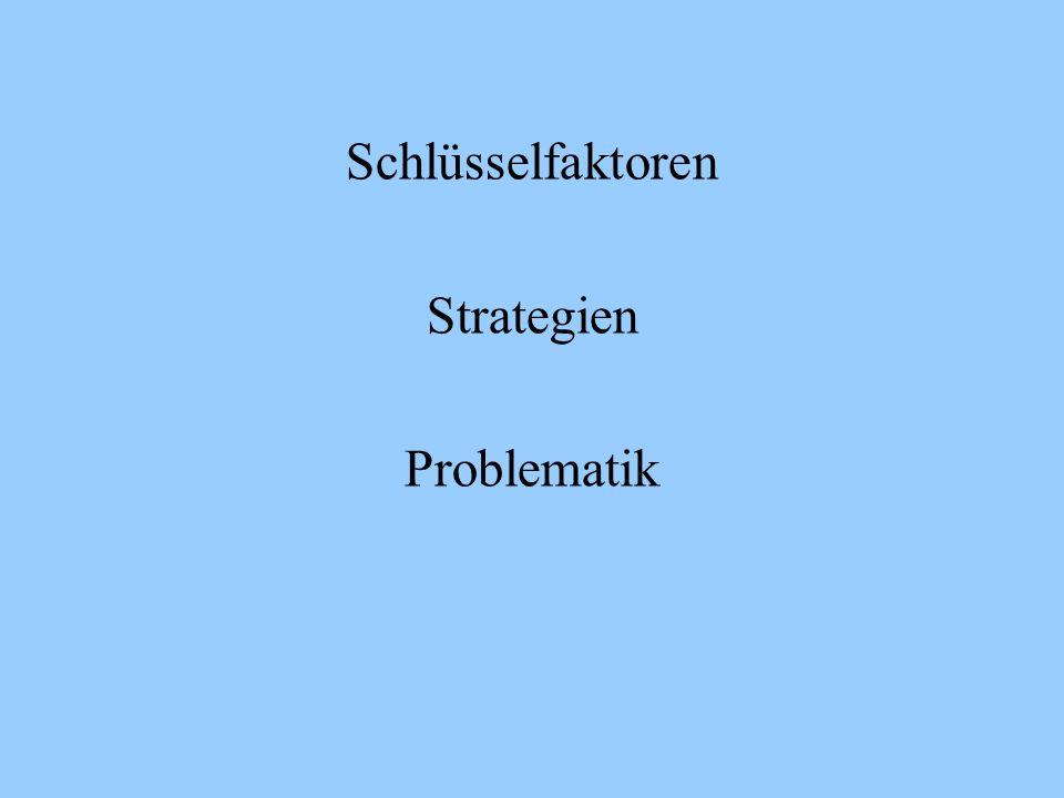 Schlüsselfaktoren Strategien Problematik