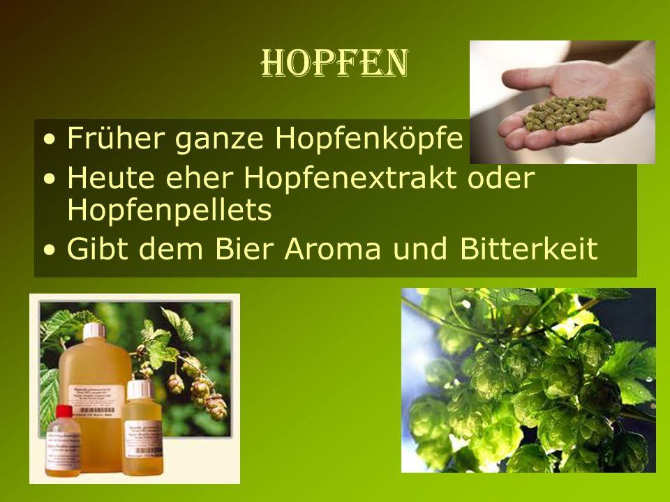 Hopfen Früher ganze Hopfenköpfe Heute eher Hopfenextrakt oder Hopfenpellets Gibt dem Bier Aroma und Bitterkeit