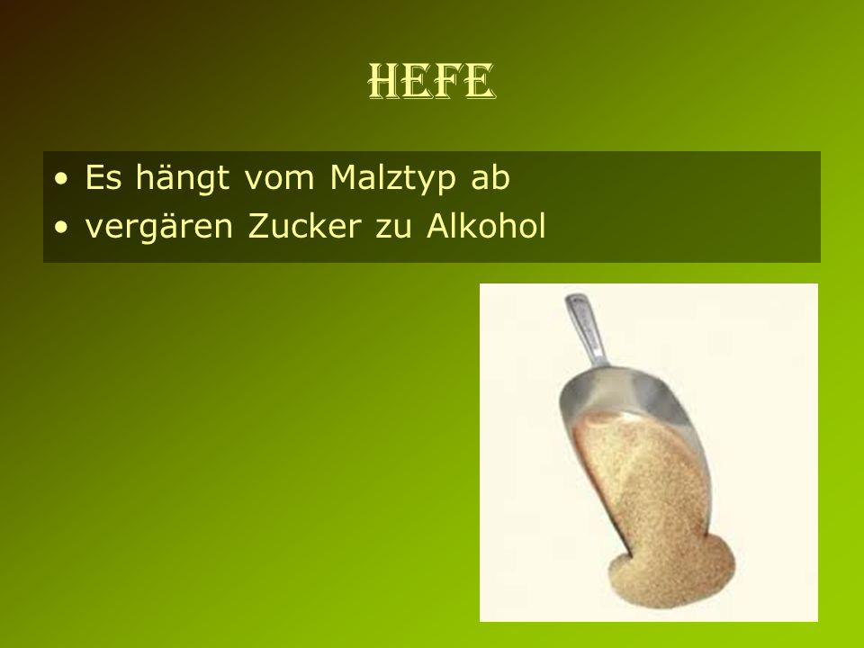 HEFE Es hängt vom Malztyp ab vergären Zucker zu Alkohol