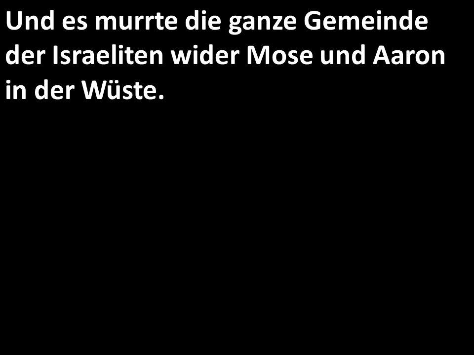 Und es murrte die ganze Gemeinde der Israeliten wider Mose und Aaron in der Wüste.
