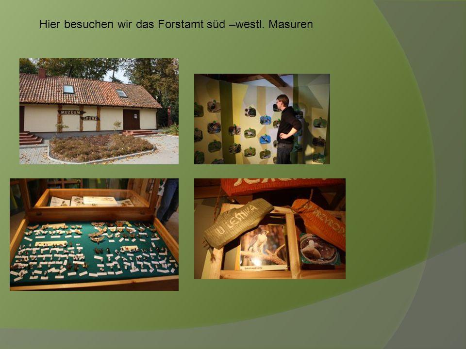 Hier besuchen wir das Forstamt süd –westl. Masuren