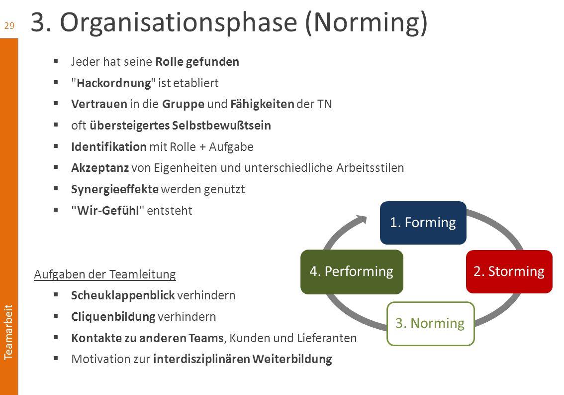 Teamarbeit 3. Organisationsphase (Norming)  Jeder hat seine Rolle gefunden 