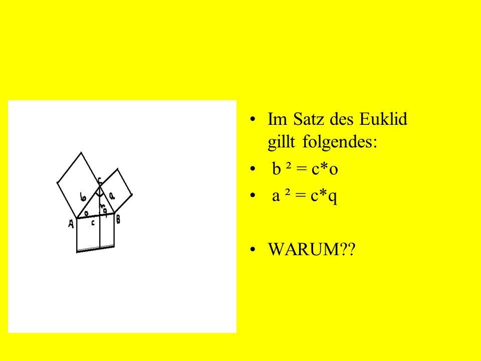 Im Satz des Euklid gillt folgendes: b ² = c*o a ² = c*q WARUM??