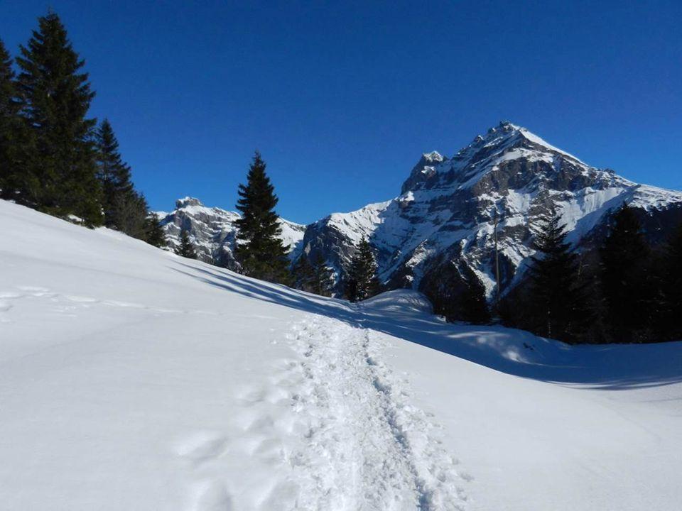 Ein schöner, empfehlenswerter Adlerhorst hoch über Intschi...