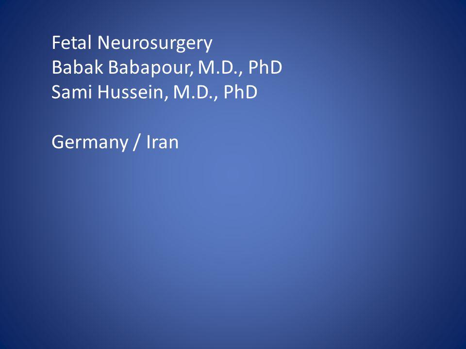 Fetal Neurosurgery Babak Babapour, M.D., PhD Sami Hussein, M.D., PhD Germany / Iran