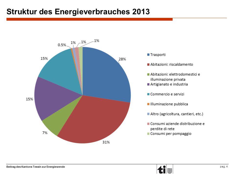 Beitrag des Kantons Tessin zur Energiewende pag. 4 Struktur des Energieverbrauches 2013