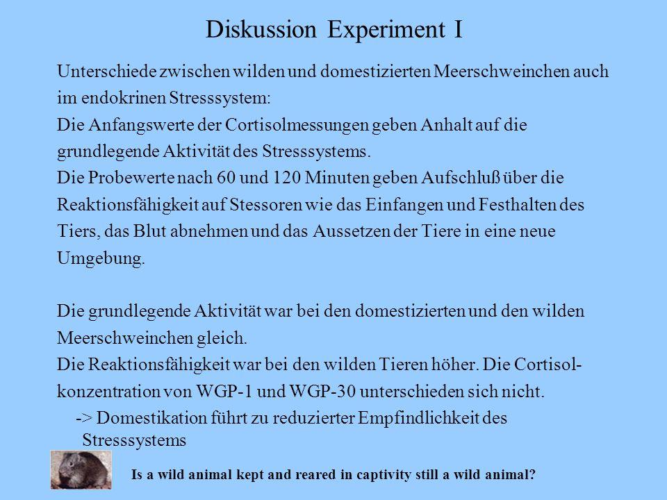 Unterschiede zwischen wilden und domestizierten Meerschweinchen auch im endokrinen Stresssystem: Die Anfangswerte der Cortisolmessungen geben Anhalt a