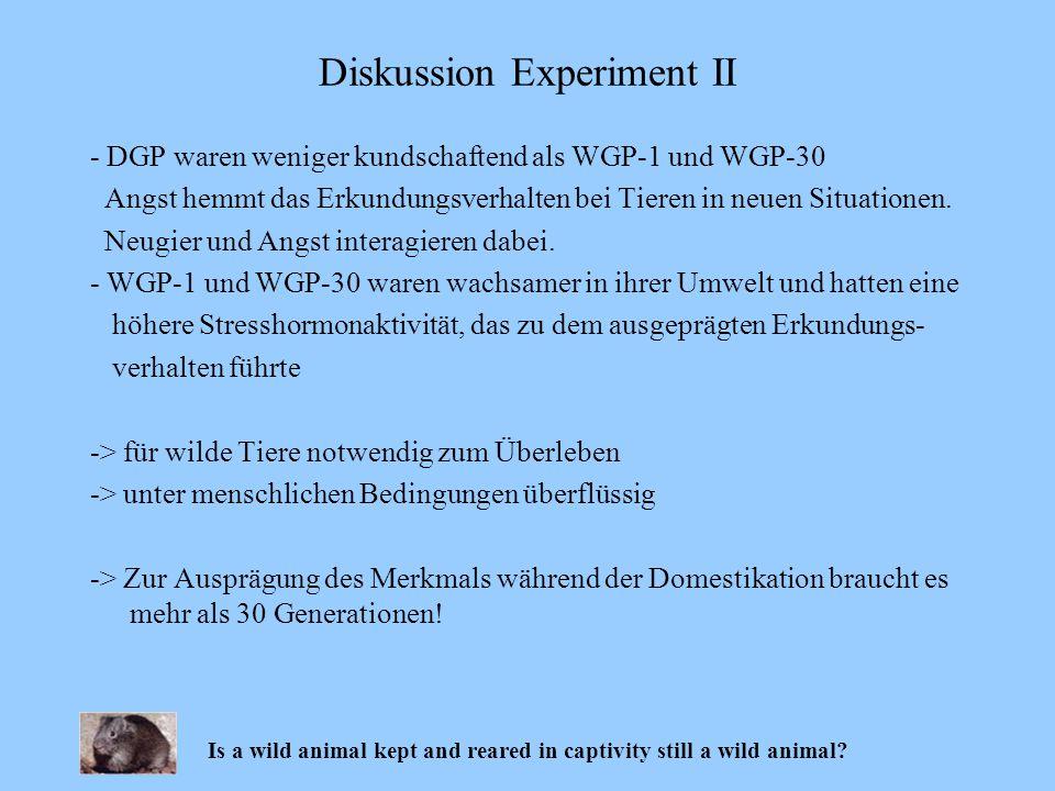 - DGP waren weniger kundschaftend als WGP-1 und WGP-30 Angst hemmt das Erkundungsverhalten bei Tieren in neuen Situationen. Neugier und Angst interagi