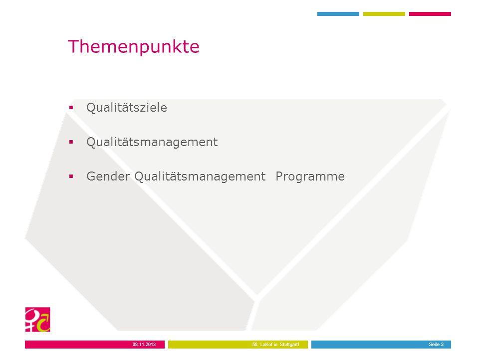 Themenpunkte  Qualitätsziele  Qualitätsmanagement  Gender Qualitätsmanagement Programme Seite 3 08.11.2013 58.