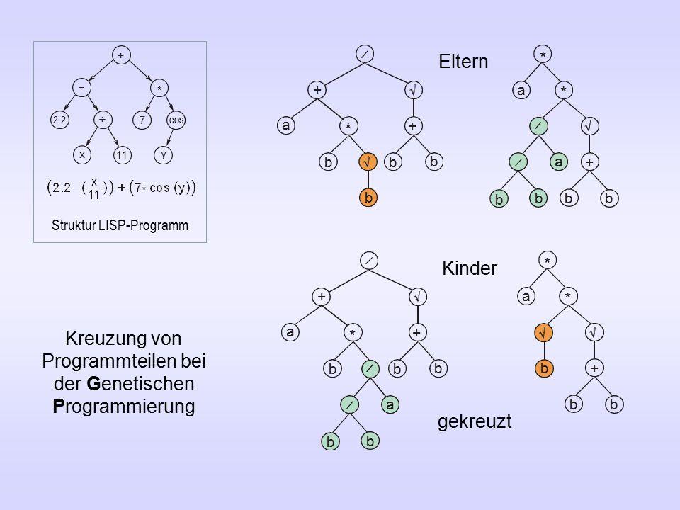 + a * + b bb b + a * b b b b a * + a * b b * b b b a + a * + bb b + * 7 ÷ x 11 y 2.2 cos Eltern Kinder gekreuzt Kreuzung von Programmteilen bei der Genetischen Programmierung Struktur LISP-Programm