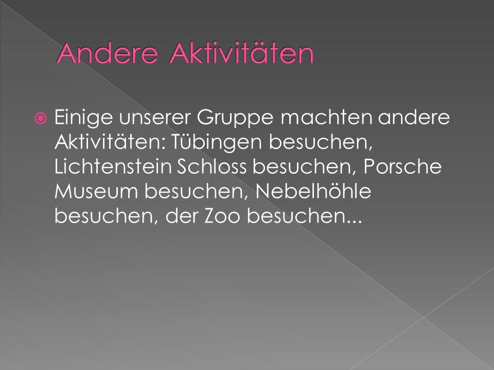  Einige unserer Gruppe machten andere Aktivitäten: Tübingen besuchen, Lichtenstein Schloss besuchen, Porsche Museum besuchen, Nebelhöhle besuchen, der Zoo besuchen...