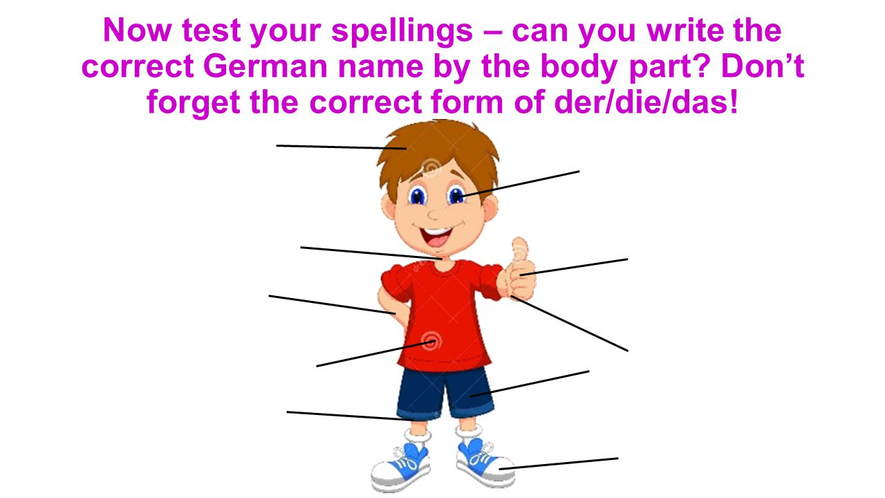 Now test your spellings – can you write the correct German name by the body part? Don't forget the correct form of der/die/das!