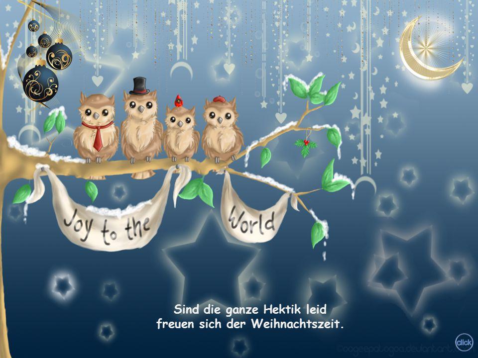 Sitzen alle gern zusammen unter den geschmückten Tannen. Packen die Geschenke aus laben sich am Weihnachtsschmaus.