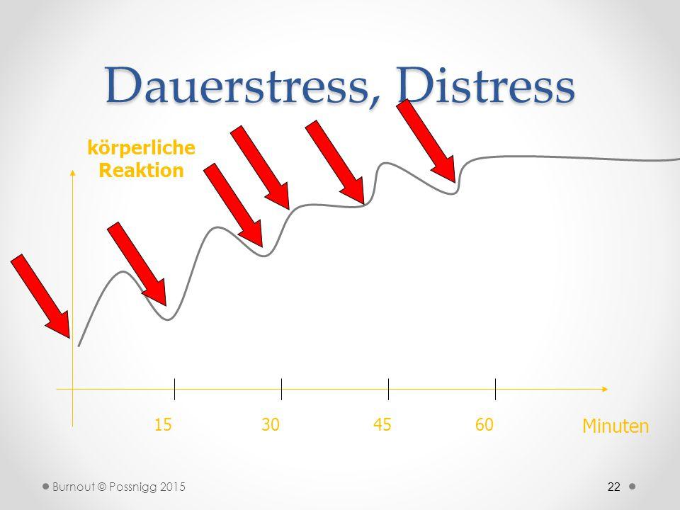 22 Dauerstress, Distress körperliche Reaktion Minuten 15304560 Burnout © Possnigg 2015