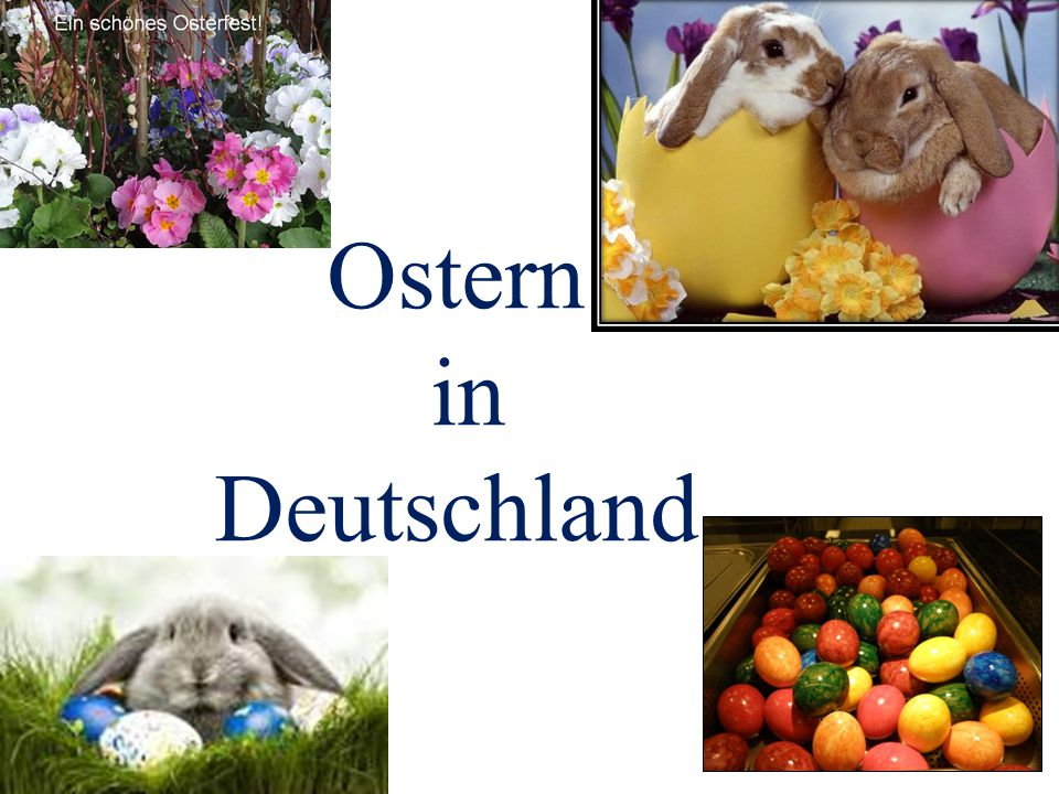 Die Familie Müller feiert Ostern 2345 BDACE