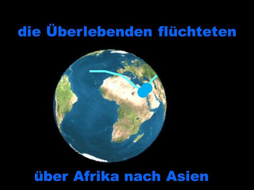 die Überlebenden flüchteten über Afrika nach Asien über Afrika nach Asien