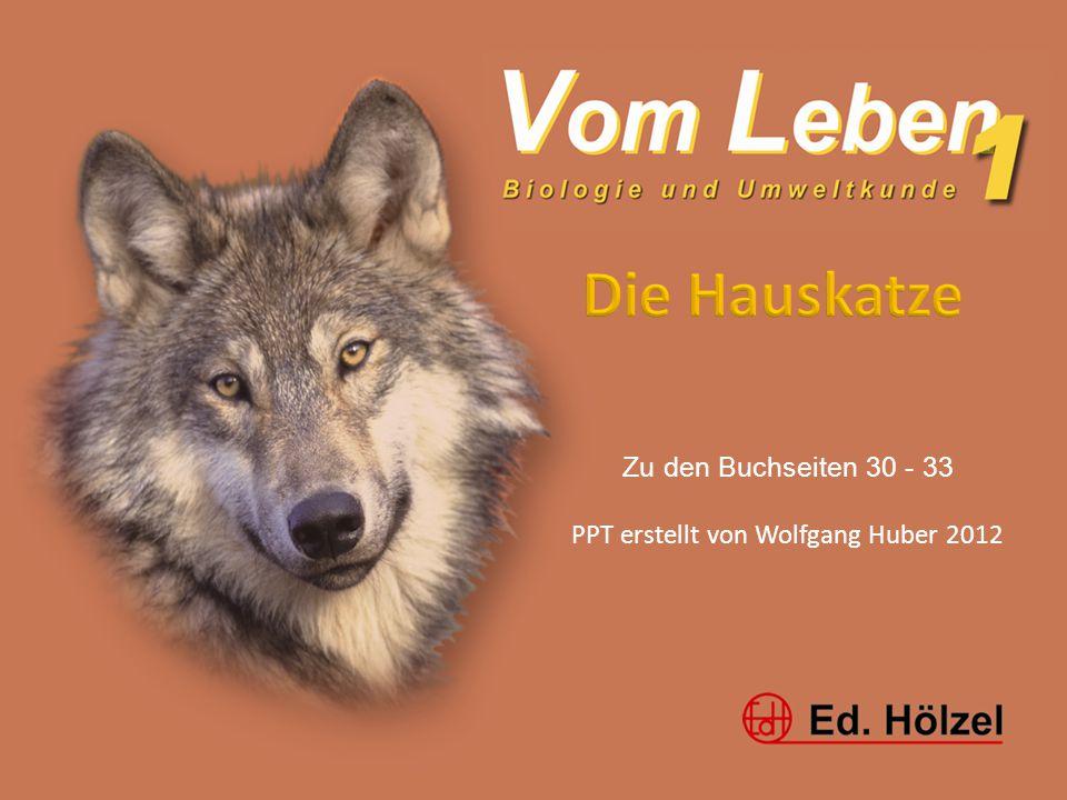 Vom Leben 1 / Blutkreislauf / Huber 20121 Zu den Buchseiten 30 - 33 PPT erstellt von Wolfgang Huber 2012