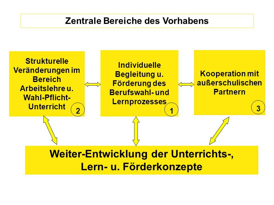 Kooperation mit außerschulischen Partnern Zentrale Bereiche des Vorhabens Individuelle Begleitung u.