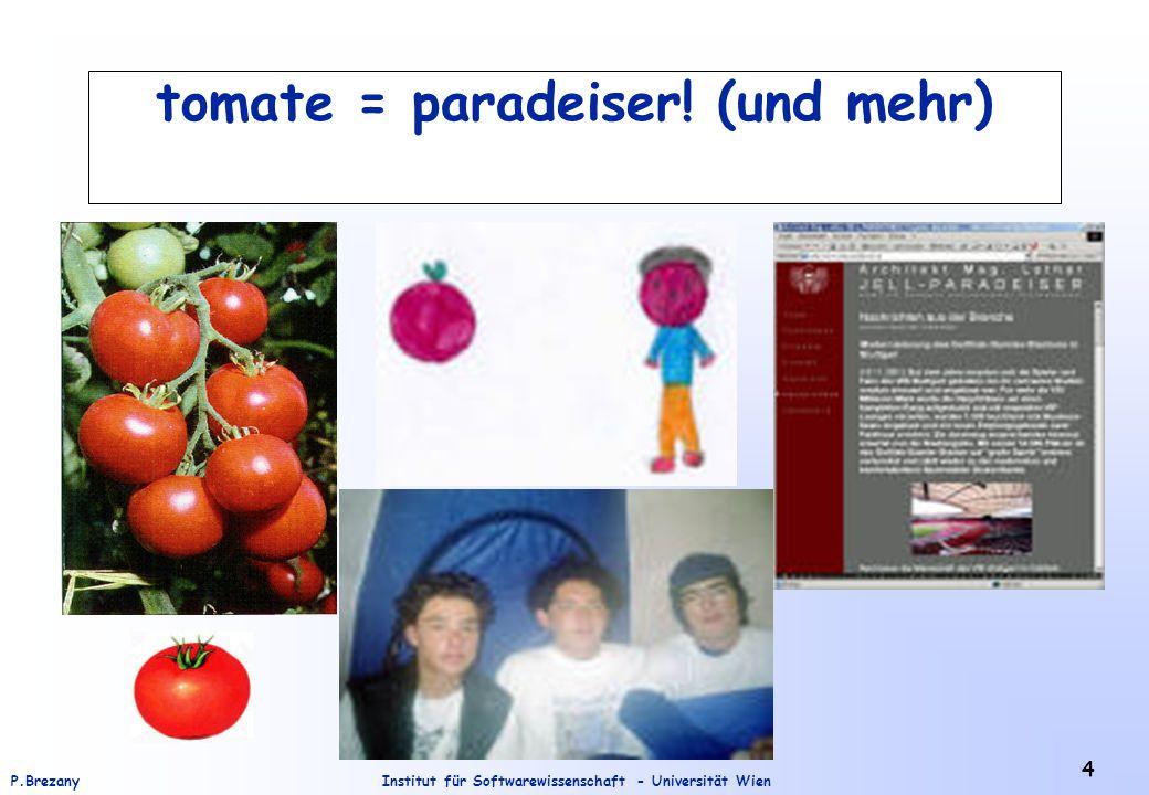 Institut für Softwarewissenschaft - Universität WienP.Brezany 5 Einführung Man kann sich Semantic Web (SWeb) als eine Erweiterung des existierenden Web vorzustellen, wo zusätzlich Dokumente mit Meta-Information annotiert sind.