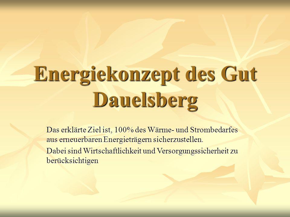 Energiekonzept des Gut Dauelsberg Das erklärte Ziel ist, 100% des Wärme- und Strombedarfes aus erneuerbaren Energieträgern sicherzustellen. Dabei sind