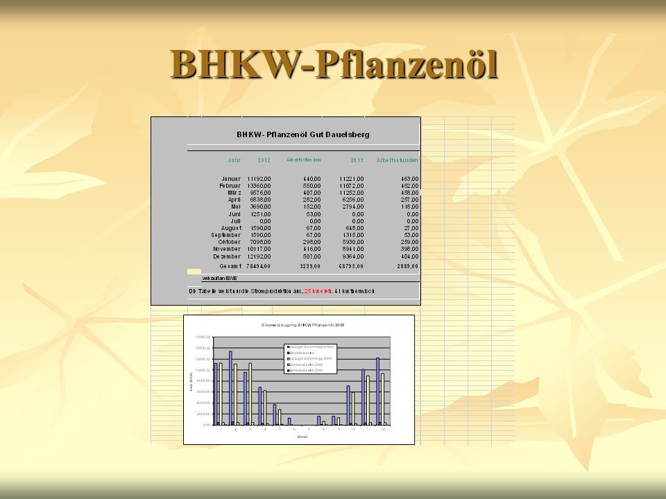 BHKW-Pflanzenöl