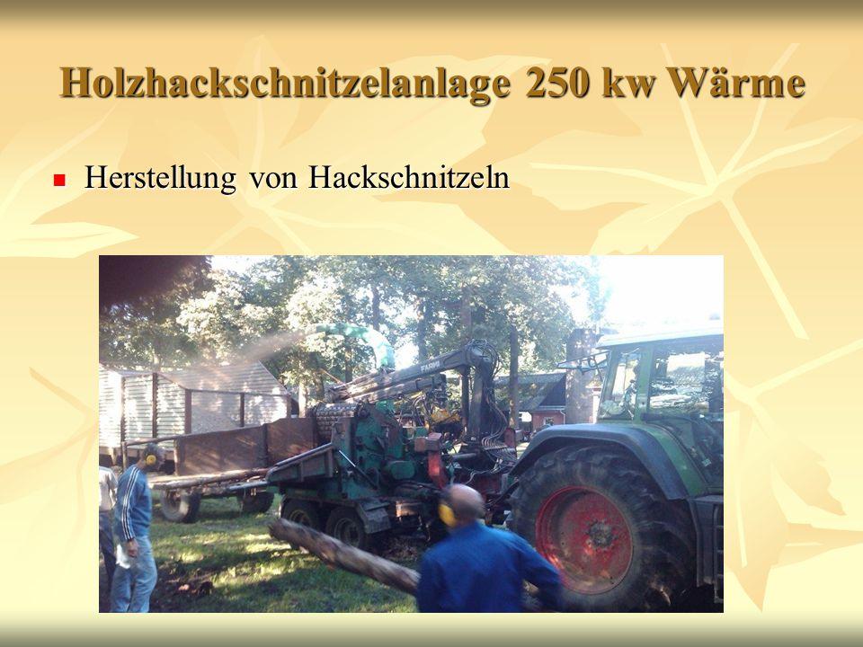 Holzhackschnitzelanlage 250 kw Wärme Herstellung von Hackschnitzeln Herstellung von Hackschnitzeln