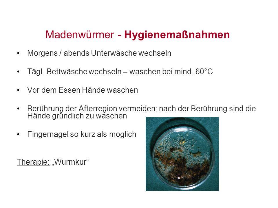 Madenwürmer - Hygienemaßnahmen Morgens / abends Unterwäsche wechseln Tägl. Bettwäsche wechseln – waschen bei mind. 60°C Vor dem Essen Hände waschen Be