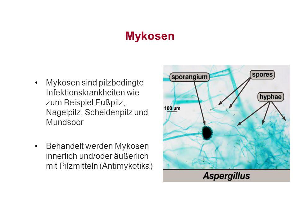 Mykosen Mykosen sind pilzbedingte Infektionskrankheiten wie zum Beispiel Fußpilz, Nagelpilz, Scheidenpilz und Mundsoor Behandelt werden Mykosen innerl