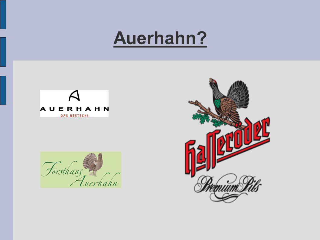 Auerhahn?
