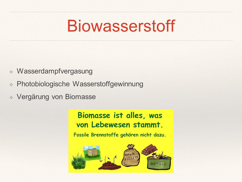 Biowasserstoff ❖ Wasserdampfvergasung ❖ Photobiologische Wasserstoffgewinnung ❖ Vergärung von Biomasse
