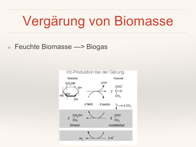 Vergärung von Biomasse ❖ Feuchte Biomasse —> Biogas